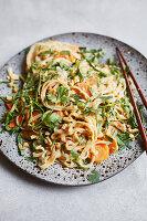 Asiatischer Mangold-Reisnudel-Salat mit Koriander und Erdnüssen