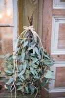 Eukalyptus als Bäumchen gebunden