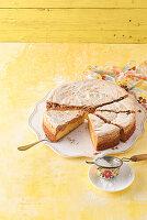 Aprikosen-Haselnuss-Kuchen