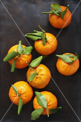 Satsumas with leaves
