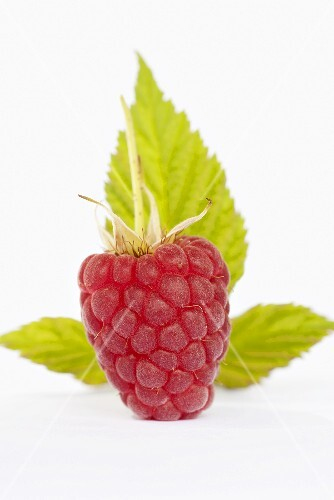 A raspberry with leaves