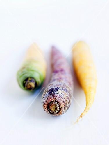 Palatinate carrots
