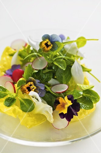 Salad with spring flowers and radishes