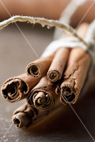 Cinnamon sticks, tied in a bundle