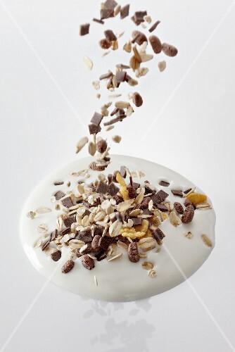 Muesli falling into a splash of yogurt