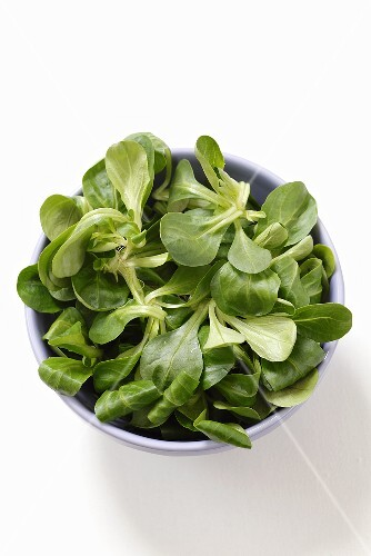 Fresh lamb's lettuce in a bowl