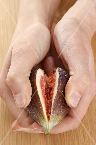 Hands breaking open a fig