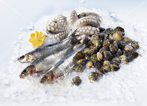 Sardines, muscles and octopus