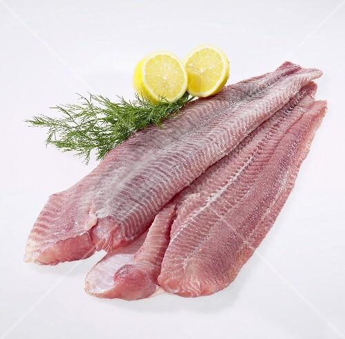 Fresh catfish fillets