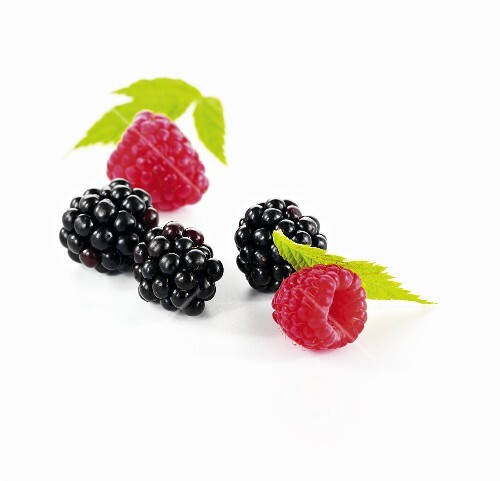 Blackberries and raspberries with leaves