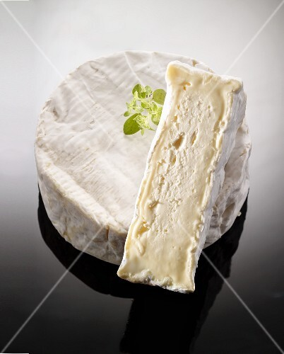 Camembert Payson