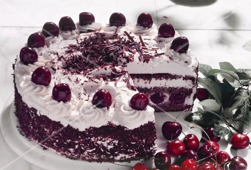 Black Forest cherry gateau, a piece cut