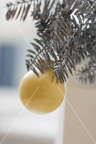 Christmas bauble on silver fir branch