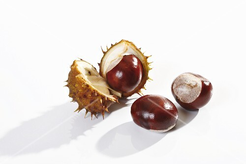 Horse chestnuts, with and without shells