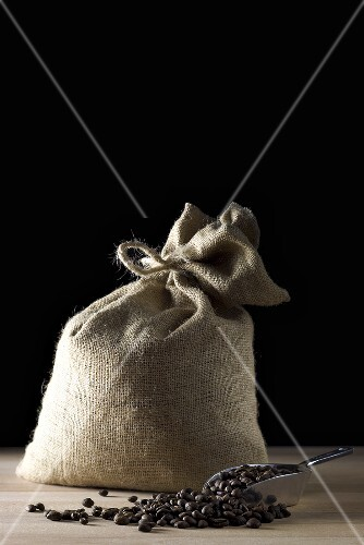 Sack of coffee beans with coffee beans in scoop