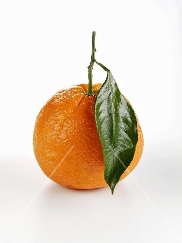 An orange with leaf