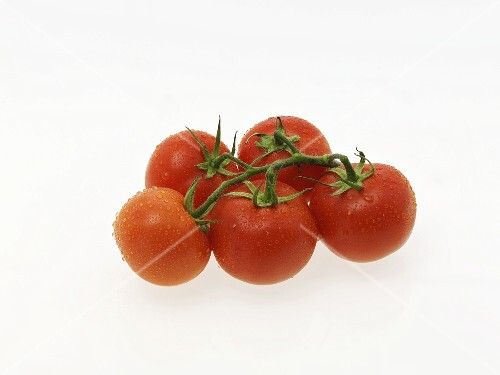 Five freshly washed vine tomatoes