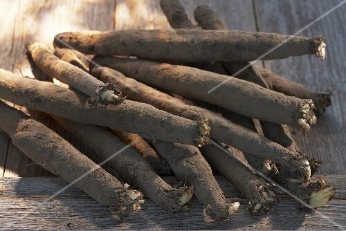Scorzonera (black salsify) on wooden background