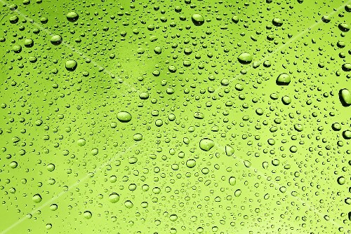 Drops of water on green surface