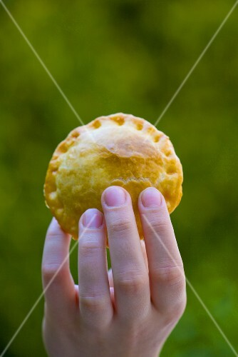 Hand holding meat pie