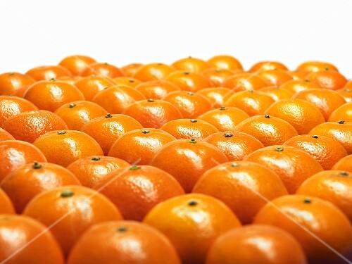 Mandarin oranges in rows