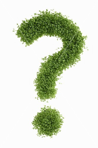 A question mark made from cress
