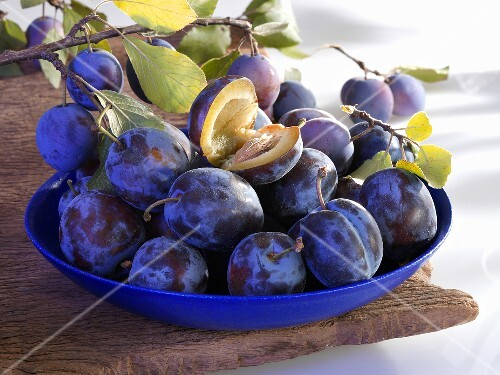 Plums in dish and on branch