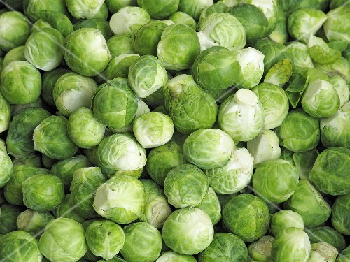 Fresh brussels sprouts (macro zoom)