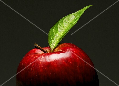 A red apple with leaf