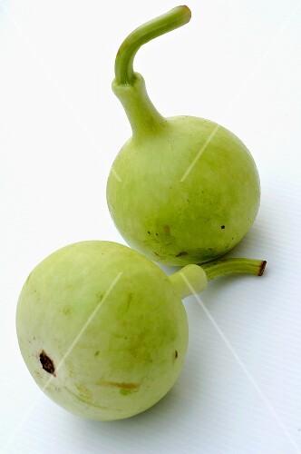 Nam Tao (Bottle gourd)