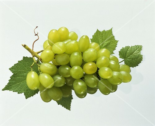 Green grapes with vine leaves