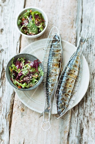 Mackerel with baby lettuce and an oriental vinaigrette