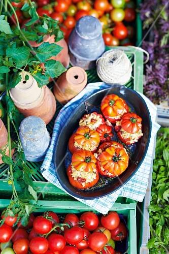 Stuffed tomatoes in a baking dish