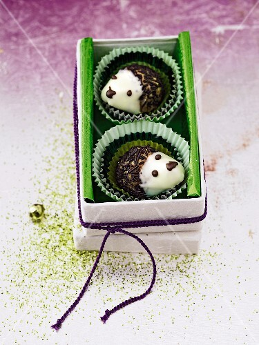 Two rum ball hedgehogs in a box