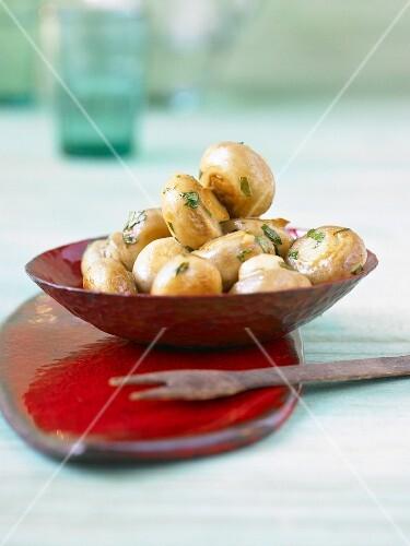 Marinated mushrooms with balsamic vinegar and parsley (Italy)