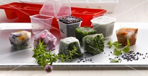 Herbs being frozen