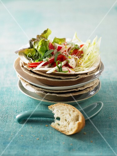 Raw radish salad with radishes, peppers and bean sprouts