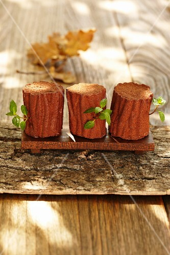 Chocolate mousse shaped like tree trunks