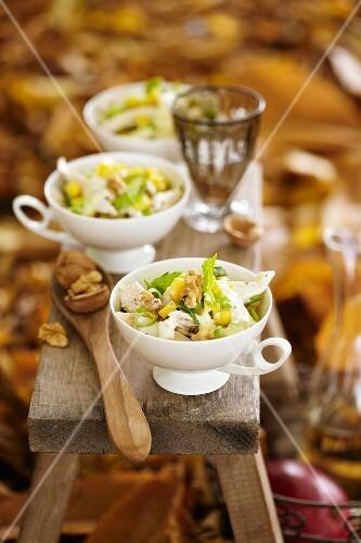 Chicken salad with mango and walnuts