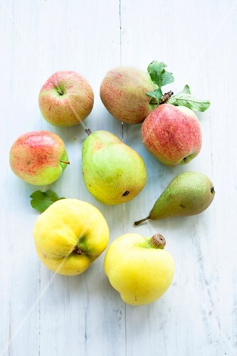 Pip fruits: apples, pears and quinces