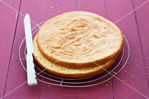 Raspberry cake being made: sponge base being sliced in half