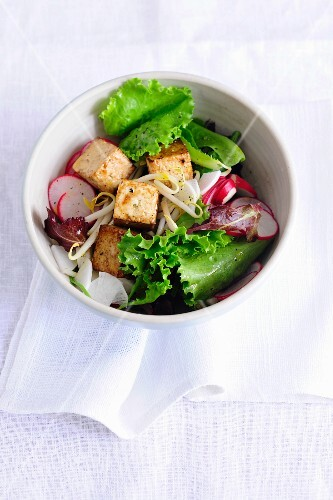 Summer salad with radishes and tofu croutons