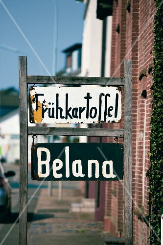 Signs advertising Belana new potatoes for sale in a farmyard