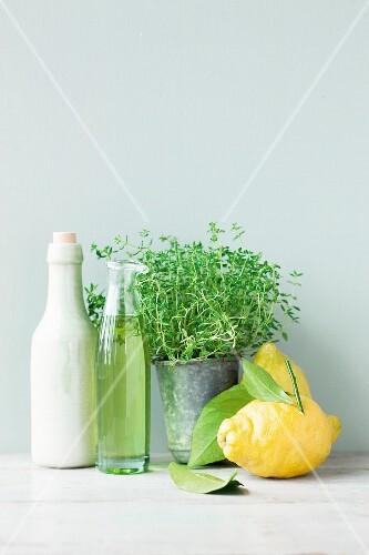 An arrangement of lemons, vinegar, oil and herbs