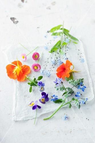 Various edible flowers (violets, daisies, borrage, nasturtiums)