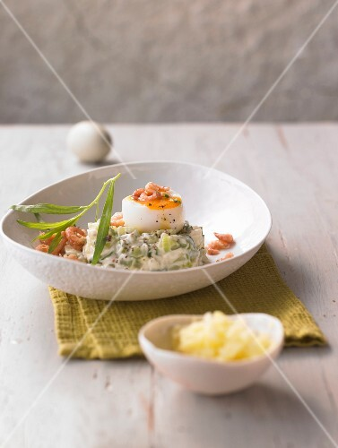 Soft-boiled egg on a cucumber medley with tarragon and shrimps