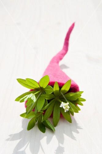 Woodruff (Galium odoratum) in a felt cornucopia