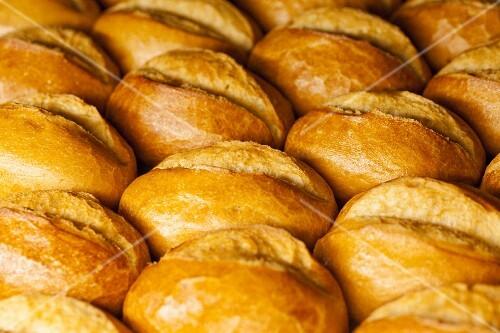 Bread rolls (full frame)
