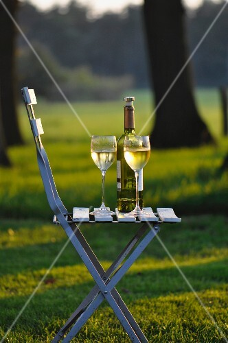 Still-life: relaxing evening with glasses of wine in garden