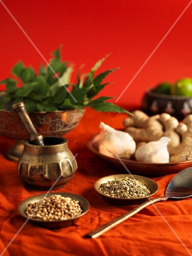 An arrangement of Indian herbs and spices